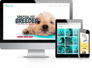 Shandell Dogs website in East Morton